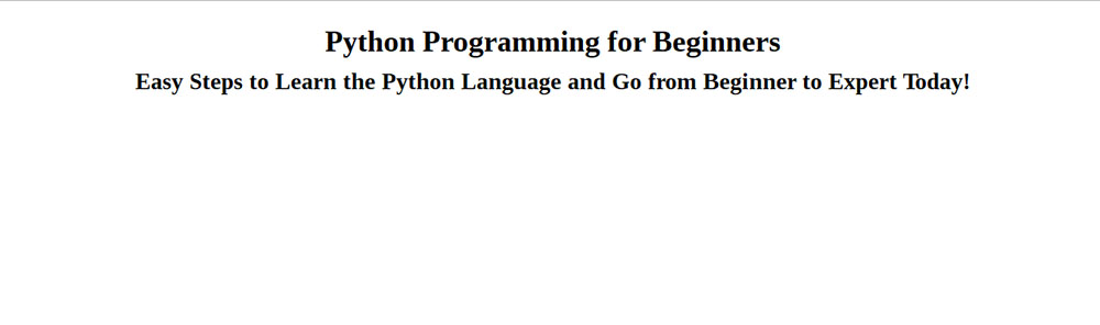 python programming for beginners (review)